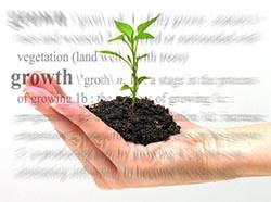 digital marketing agency in West Palm Beach, FL